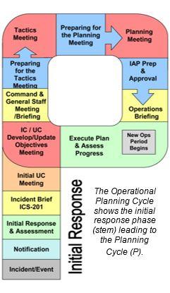 Planning P Initial Response