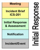 Stem of the Planning P initial response