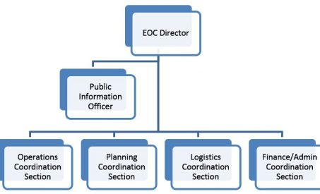 ICS-like EOC Structures
